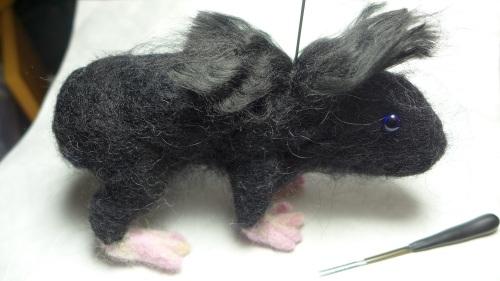 fur guinea pig 023